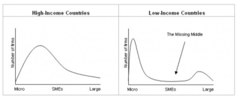 The Firm Size Distribution